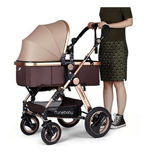 8 Best Baby Stroller Of 2019 Oioibabybags